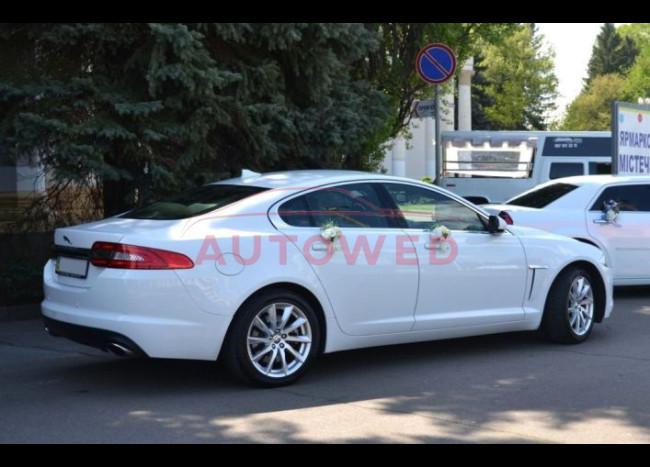 Jaguar  XF (белый)-3