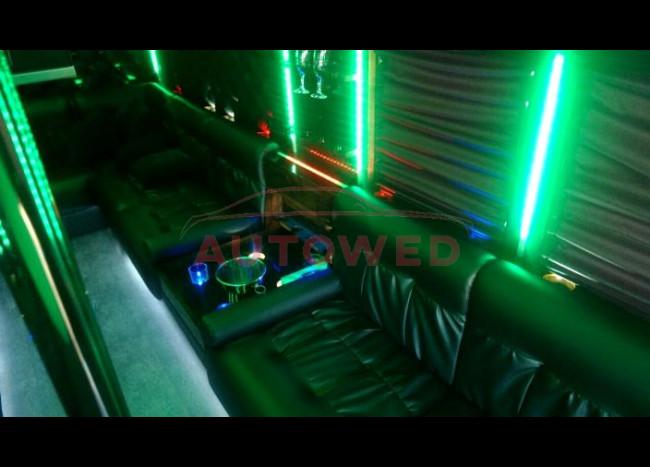 Школьный Диско-автобус USA (15 мест)-2