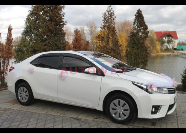 Toyota Corolla (белая)-3