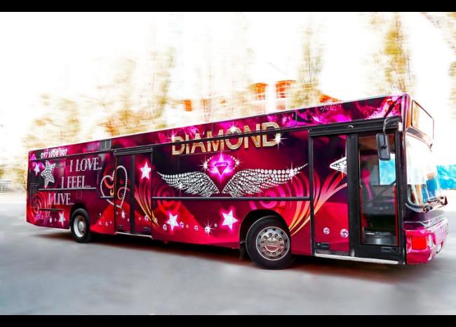 Party Bus DIAMOND (30 мест)-3