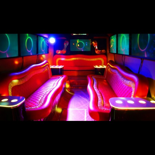 Party Bus Game-Bus Infinity (30 мест)-5