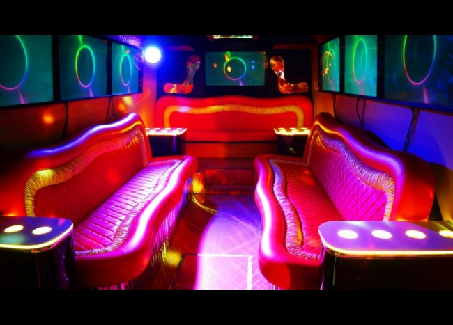 Party Bus DIAMOND (30 мест)-5