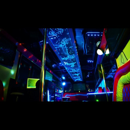Party Bus Game-Bus Infinity (30 мест)-7