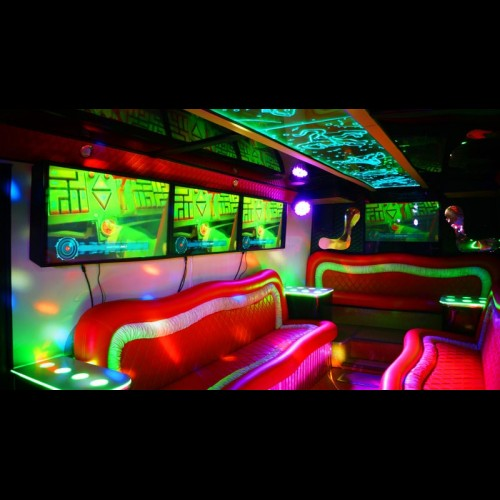 Party Bus Game-Bus Infinity (30 мест)-8