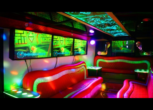 Party Bus DIAMOND (30 мест)-8