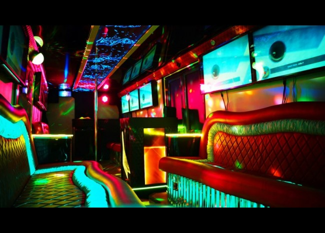 Party Bus DIAMOND (30 мест)-9
