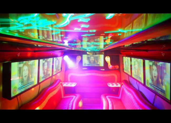Party Bus DIAMOND (30 мест)-10
