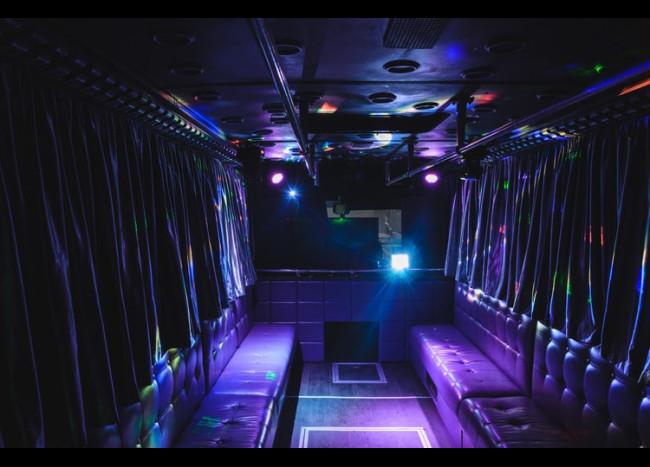 Party Bus DIAMOND (30 мест)-4